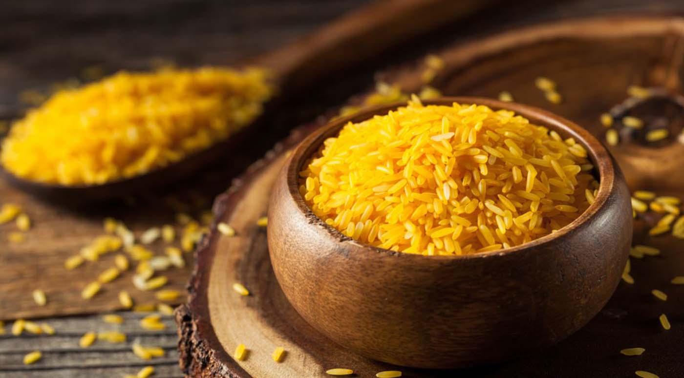 productos transgénicos arroz